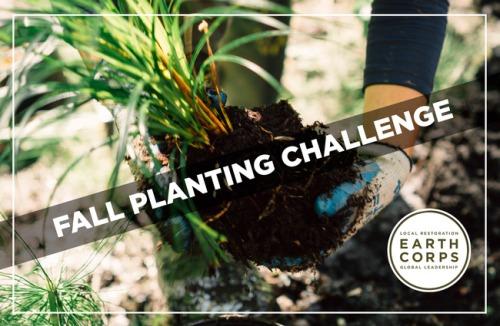 fall-planting-image