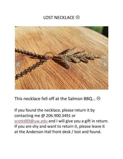 LOST NECKLACE-1